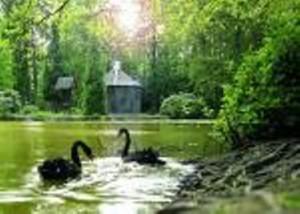 Eulbacher Park, Ausflug Urlaub auf dem Bauernhof, Zeltnerhof